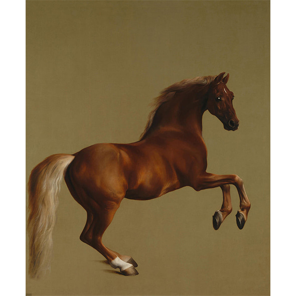 George Stubbs_Whistlejacket