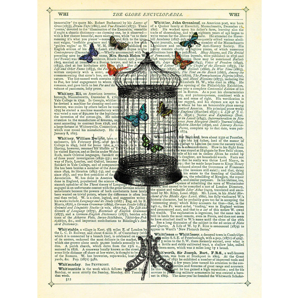 Marion McConaghie_Bird Cage and Butterflies